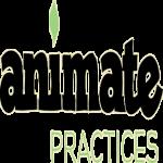 Bible Study – Animate: Practices